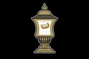 Coppa delle coppe